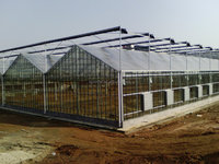 Prefabricated daylight cultivation in greenhouse