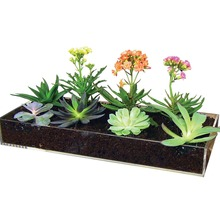 Factory Fashion Design Custom Multifuction Transparent Tray Decorate your Fairy Herb Gardens Acrylic Drip Planter Tray