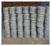 China factory cheap barb wire fence.galvanized barbed wire fencing