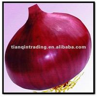 Fresh Red Onion 6-8CM