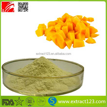 High quality wild mango juice powder/mango flavor powder