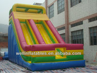 2013 new giant inflatable dry slide