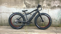 Electric Fat bike/ fat electric bike