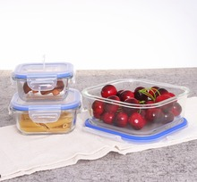 Freezer and oven safe square fancy lunch box