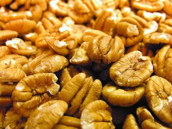 Texas Pecans Halves Wholesale