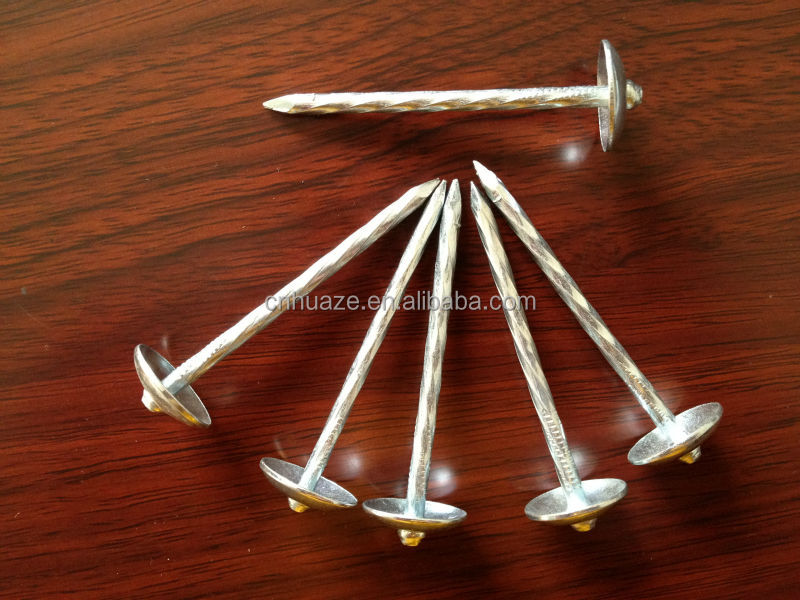 high quality galvanized umbrella roofing nails distributor