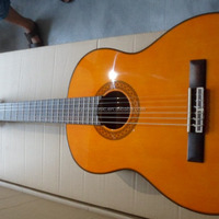 C80 Classical Guitar Best Selling Classical
