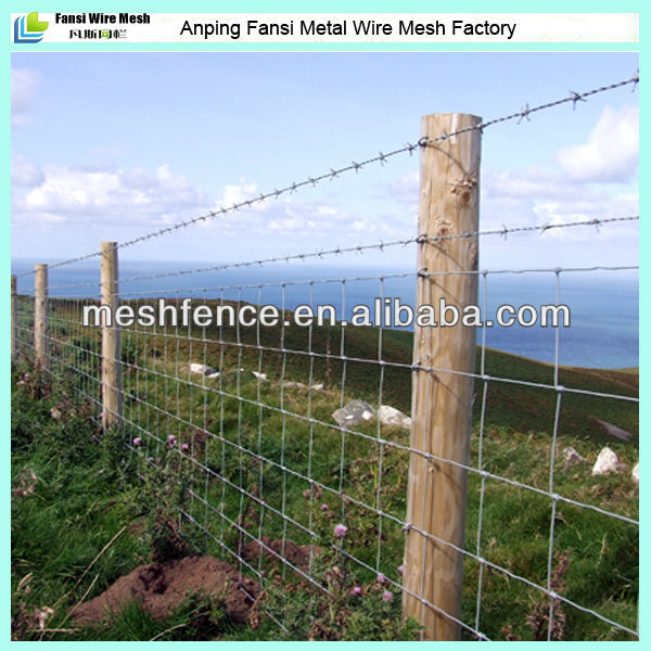 2015 hot sale Pasture wire mesh fence