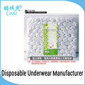 Sexy Man Briefs Disposable Non-woven Transparent Briefs For Men OEM Soft And Confortable Mens Underwear Briefs