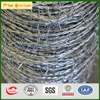 BWG 16x16 hot galvanized barbed wire