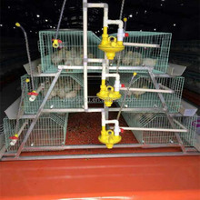 big dutchman poultry equipment/poultry cages for sale in nigeria/poultry breeding cages