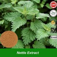 Buy Stinging Nettle leaf powder in China on Alibaba.com