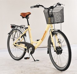 Fat Tire Electric Bike Adult Mini Scooter With Pedal For Lady