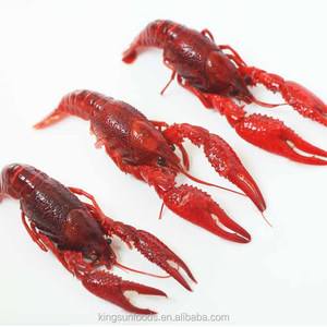 Frozen crawfish fish seafood exporter in China