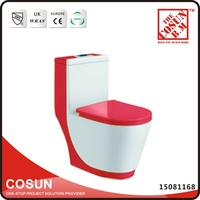 Sanitary One Piece Red Colored Ceramic Toilet