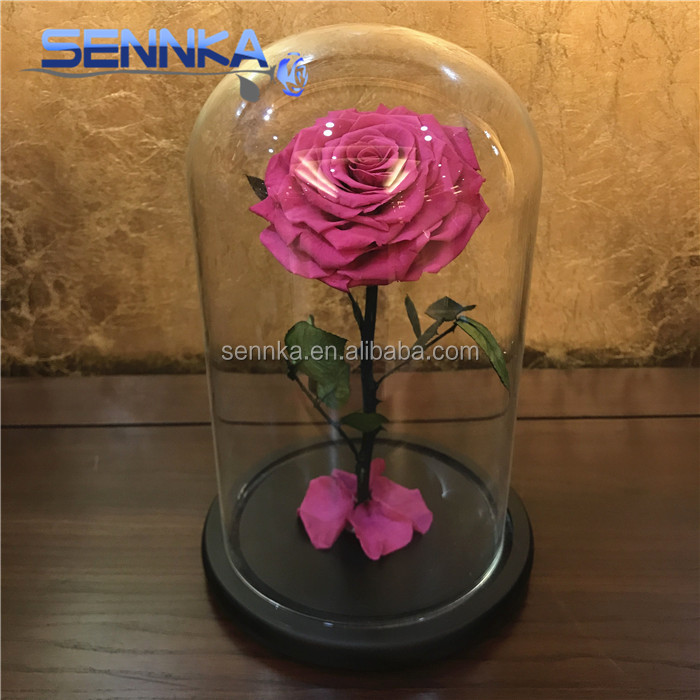 Wholesale purple color preserved rose eternal <strong>flower</strong> in glass dome/tubes