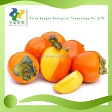 High quality organic persimmon powder,dried persimmon juice powder wholesale