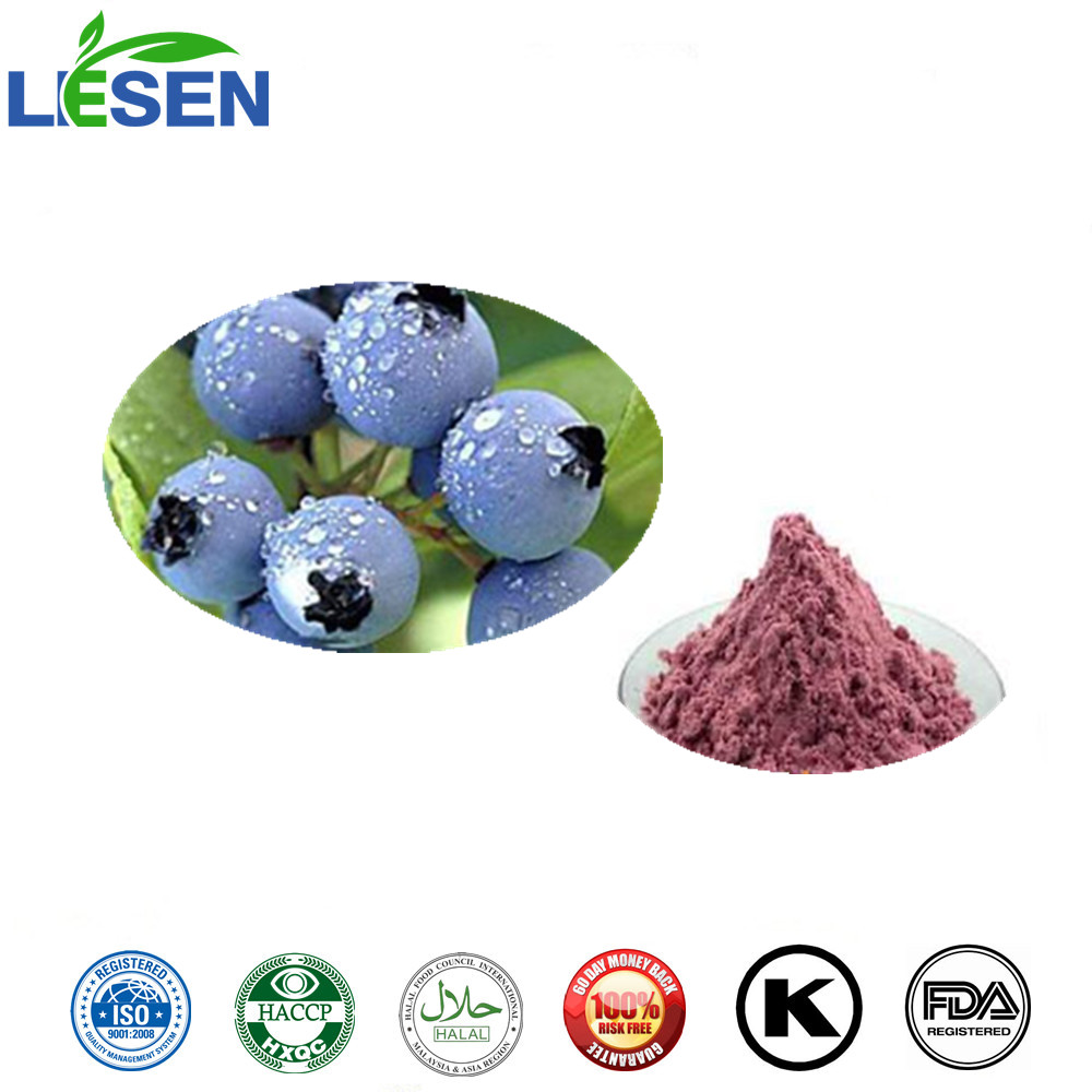 Pure Natural Fruit Powder Bilberry FD Powder Freeze Dried Bilberry Powder