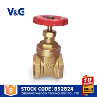 Nice Quality Brass Gate Valve