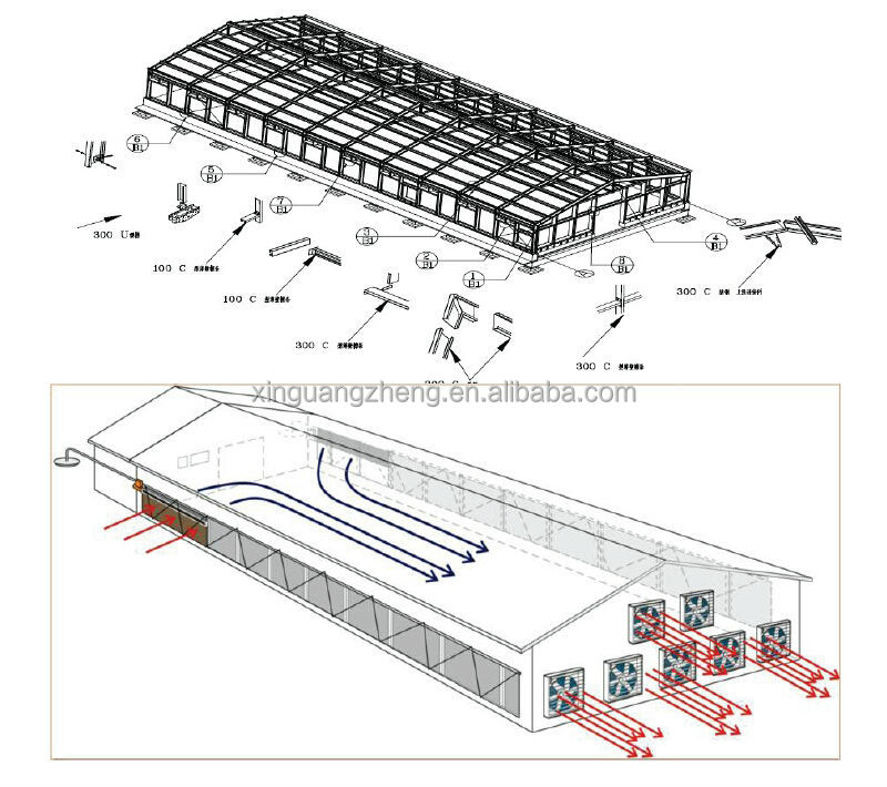 prefabricated chicken broiler house design for emerging countries