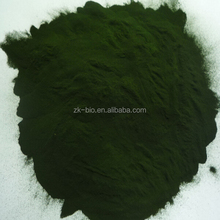 Manufacturer supply Natural Organic Chlorella powder