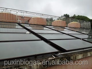 low cost concreted PUXIN household biogas plant to process cow manure