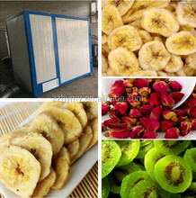 Good sale fruit slices hot air circulation drying oven