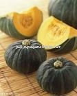 new crop fresh saffron pumpkin