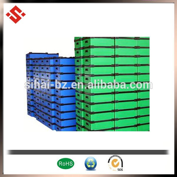 printed plastic tomato packing boxes