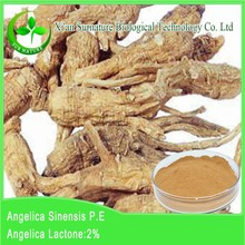 Supplying GMP Angelica root Extract