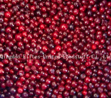 IQF frozen lingonberry or cowberry from China