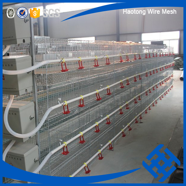 hot sale electric or hot-dipped galvanized chicken cage system