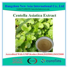 Total Triterpenes 10% Centella Asiatica Extract With Kosher Halal ISO22000 Certificate