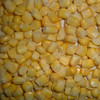 China hot sale good quality Corn gluten meal