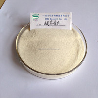 Snail protein,high quality in bulk stock,welcome inquiry