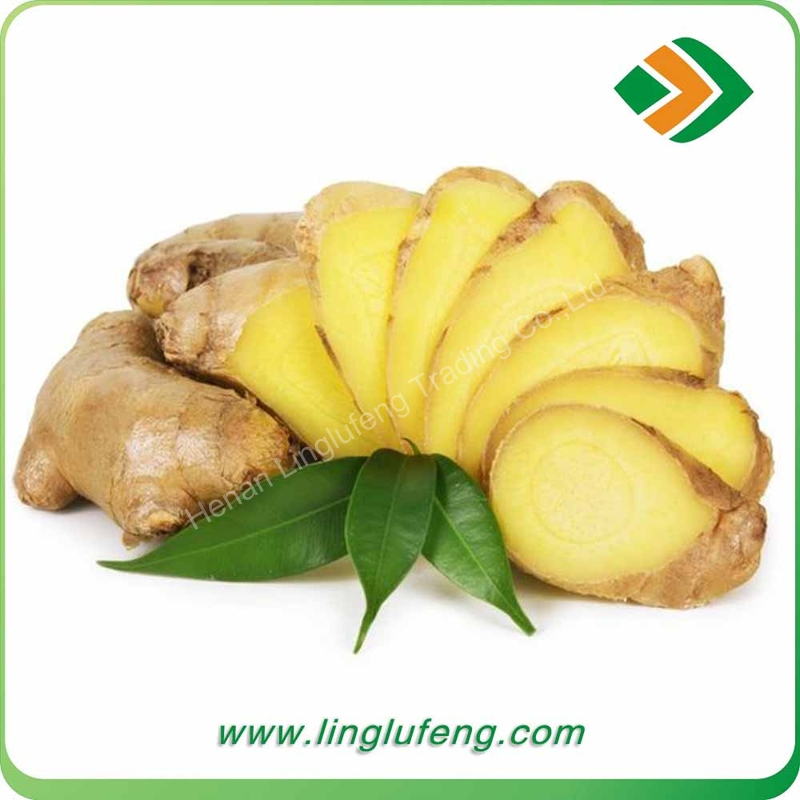 New Chinese Fresh Ginger Low Price