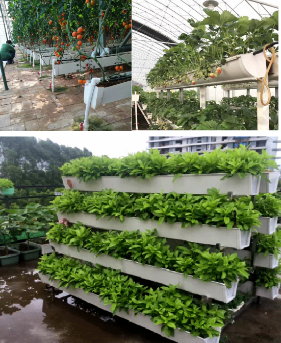 Agricultural use PVC hydroponic gutters for Strawberries and tomatoes