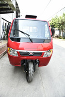 New gasoline truck cargo tricycle perdicab rickshaw manufacturers cargo tricycle with covered