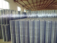 Hebei anping High quality welded wire mesh