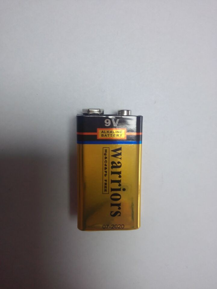 780mins 9V Alkaline Battery 6LR61