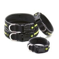 Newly designed magic tape size adjustable pet dog collar cat dog Padded collar Reflective Green color S M L XL large dog collar