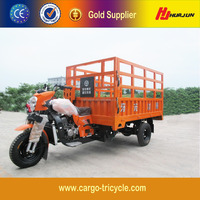 Worth Buying 300cc Trike Scooter/Cargo Motorcycle/Adult Tricycles