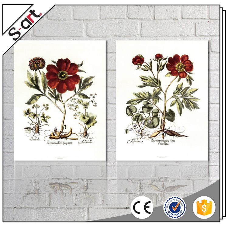 Artist designed hot selling canvas flower printing picture frames