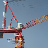 luffing jib topless tower crane 10ton D160 for sale