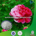 High Quality white peony root extract powder