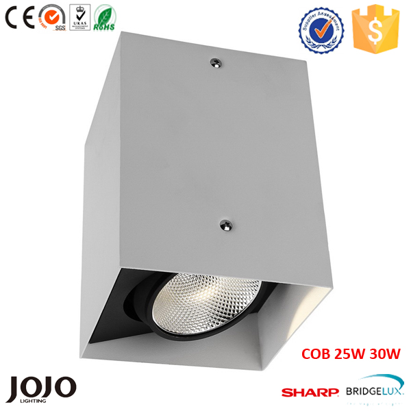 Interior design 7W 10W 15W 20W 25W COB led square surface down light