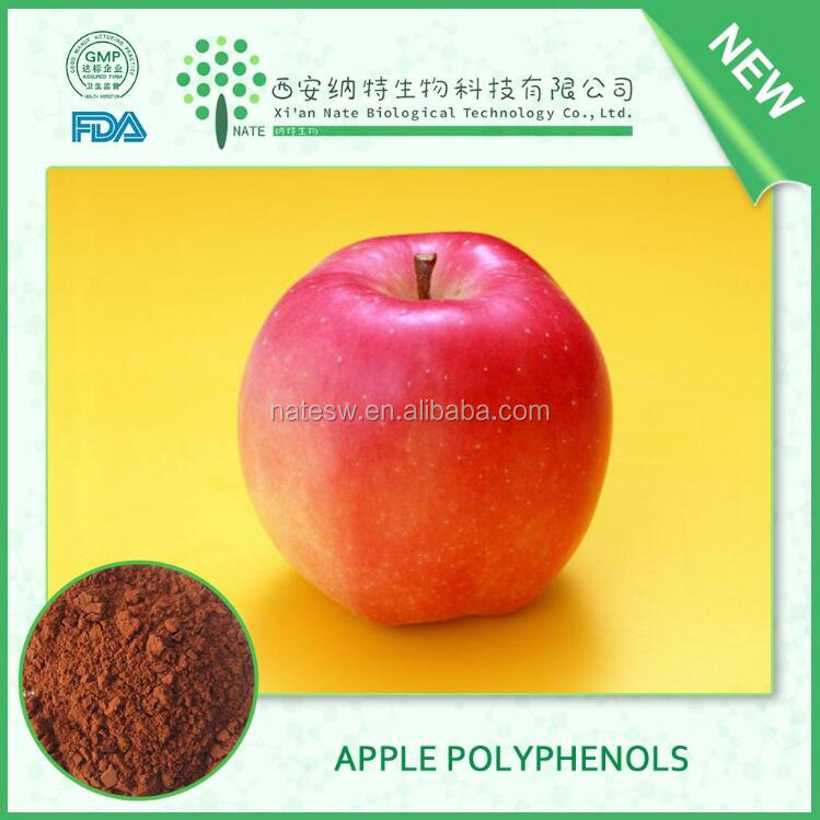 APPLE Extract Powder APPLE POLYPHENOLS 80 High Quality Free sample