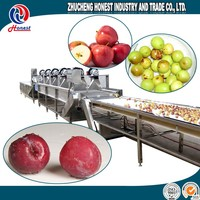 Hot sale fruit and vegetable washer/commercial sugarcane washing machine