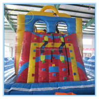 PVC 0.55mm giant inflatable water slide/inflatable climbing for adult
