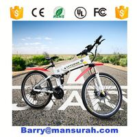 2016 Hot Selling cheap hidden 350w 12ah battery electric bicycle/electric motorbike with pedal assist